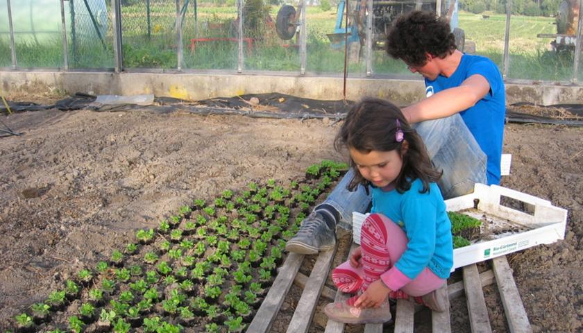 Kinder im Gemüsegarten
